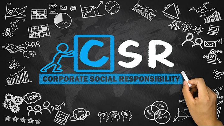 Disadvantages Of CSR