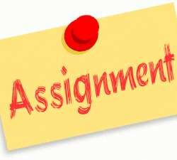 How To Get Better Grades In Your Assignment?