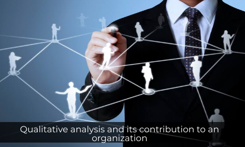 Qualitative Analysis And Its Contribution To An Organization