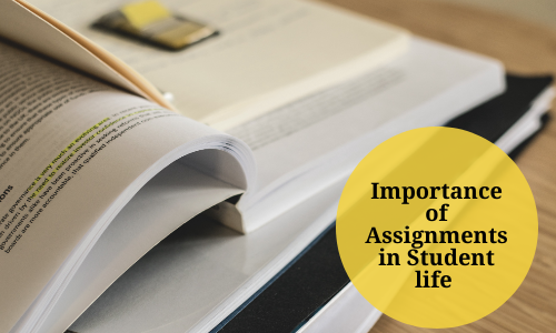 Importance Of Assignments In Student Life