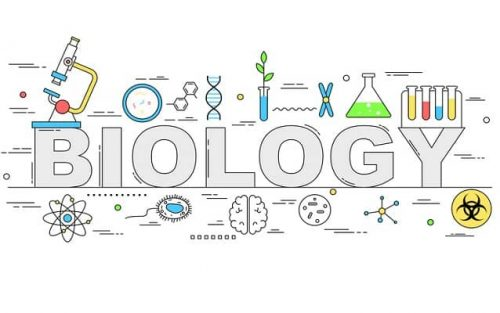 Tips To Choose An Interesting Biology Research Topic For Students
