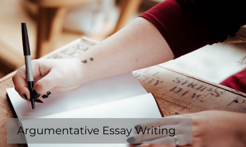 How To Write The Best Argumentative Essay For Academics?