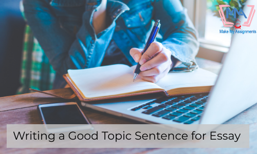 Writing A Good Topic Sentence For Essay