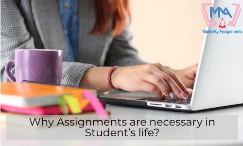 Why Assignments Are Necessary In Student's Life?