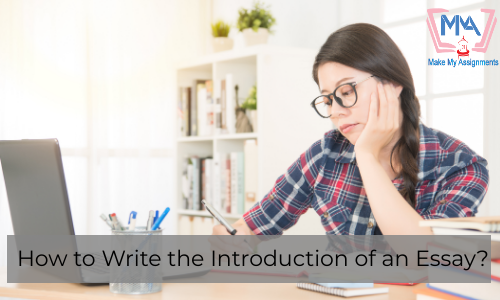 How To Write The Introduction Of An Essay?