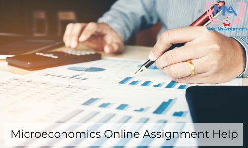 Microeconomics Online Assignment Help